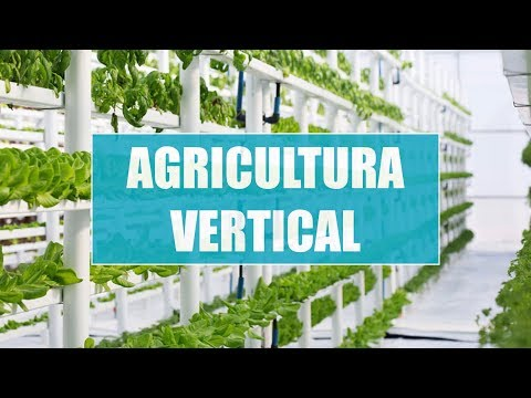 agricultura vertical